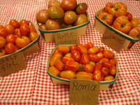 Download_10.02.28_tomatoes_2_038