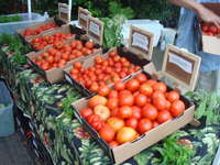 Athens_farmers_market_10.05.16_004